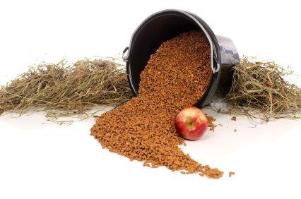 aromas para piensos y alimentación animal